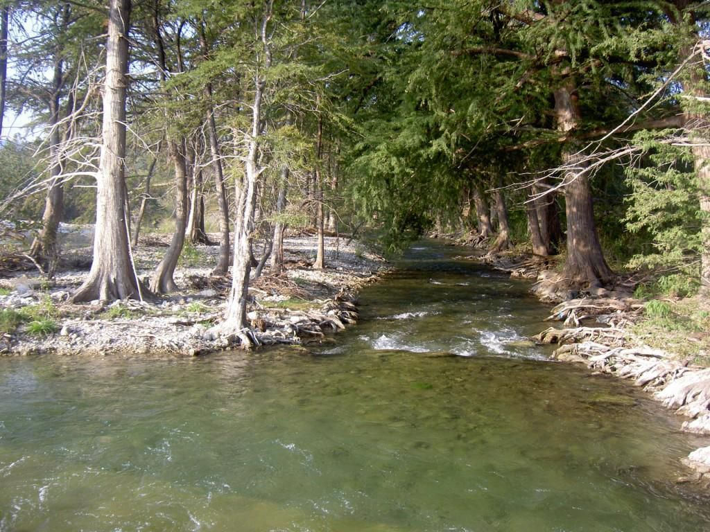 I love the frio river in concan tx frio country cabins for Cabins along the frio river