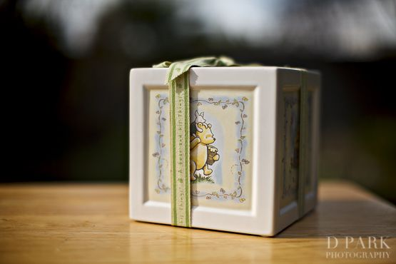 Winnie the Pooh Inspired Baby Shower « Home by D. Park Photography