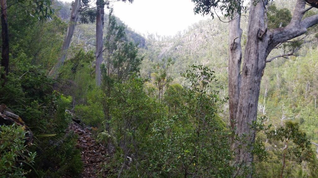 Image result for pelverata falls