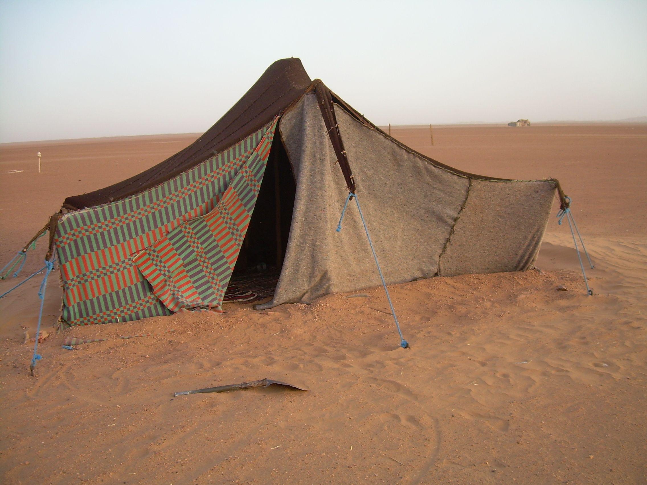 Arabian Desert Camps 5