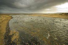 Clyne River - Wales, UK