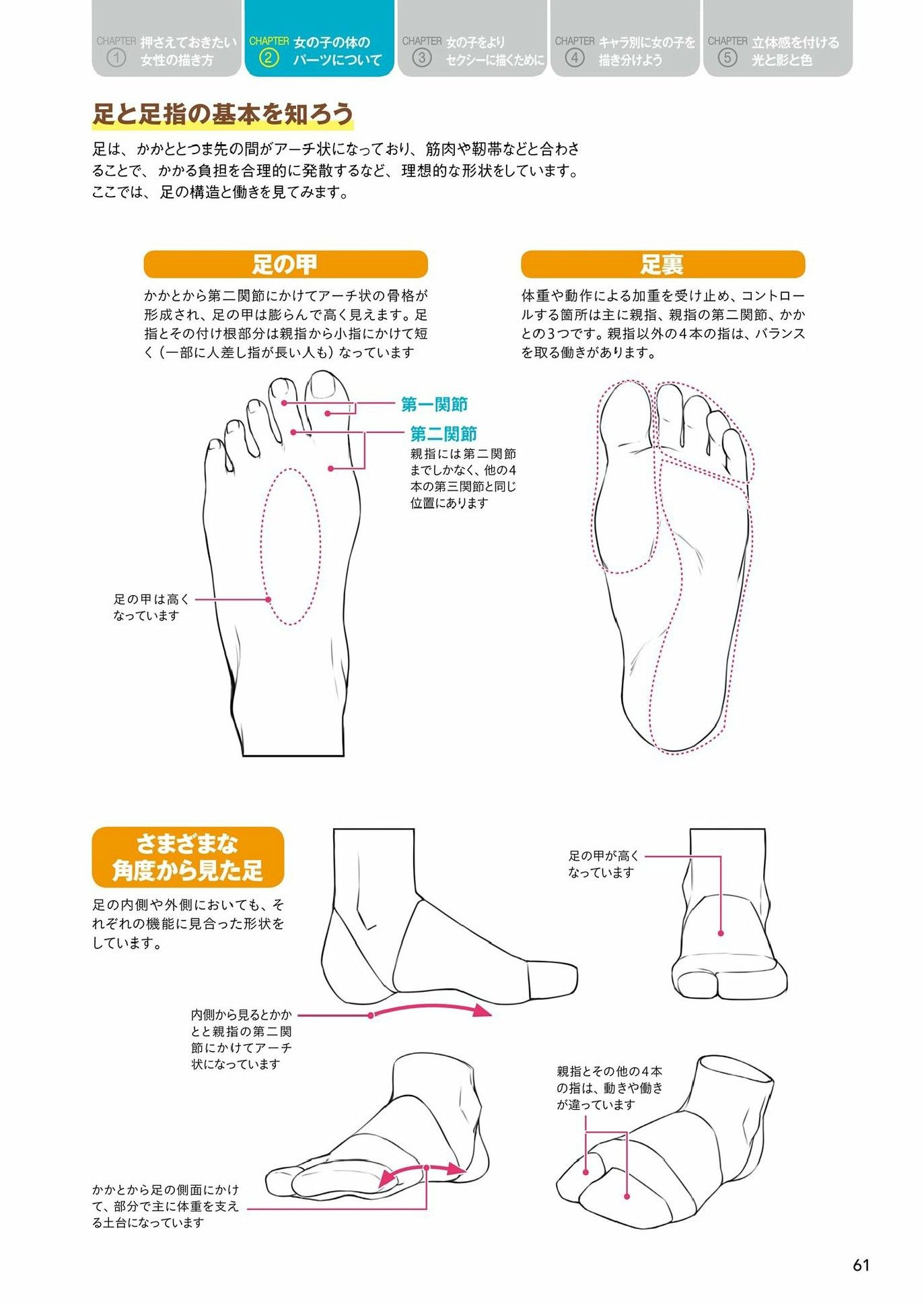 Houtengekis Drawing Tutorial For Drawing Reference In 2019