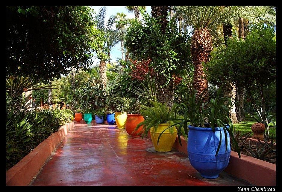 Idee sol terrasse ciment coloré, comme dans le jardin Majorelle a