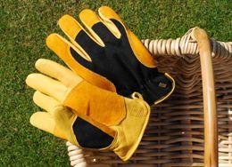f03af46f14e3a16bf89fc8f2bec05599 - Gold Leaf Gents Winter Touch Gardening Gloves