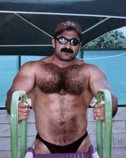 Daddies gay torrent Bear