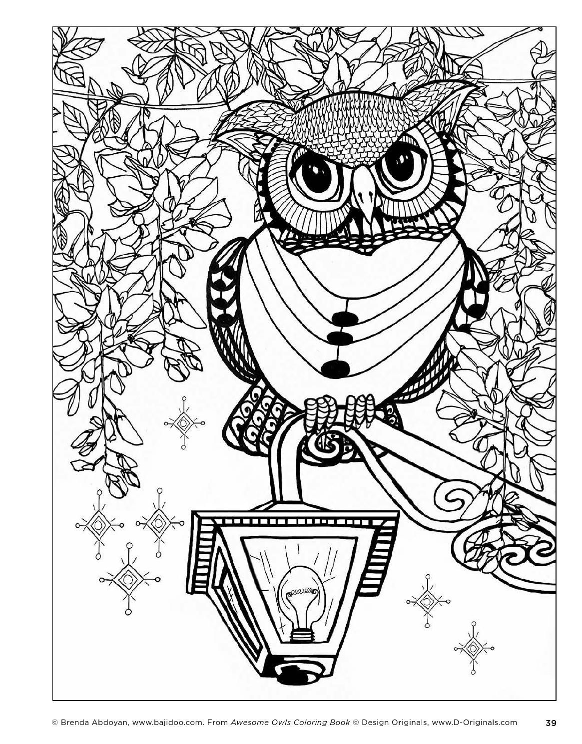 awesome owls coloring book by fox chapel publishing issuu - Owls Coloring Pages 2