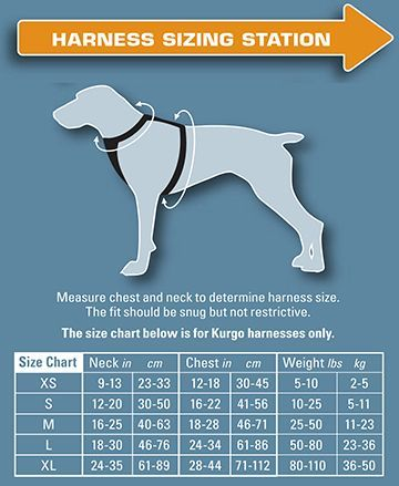 There Are Many Benefits To Owning A Harness For Your Dog Finding