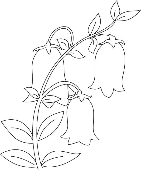 Bell In Garden Coloring Page Garden Coloring Pages Diy Canvas Art Painting Abstract Coloring Pages