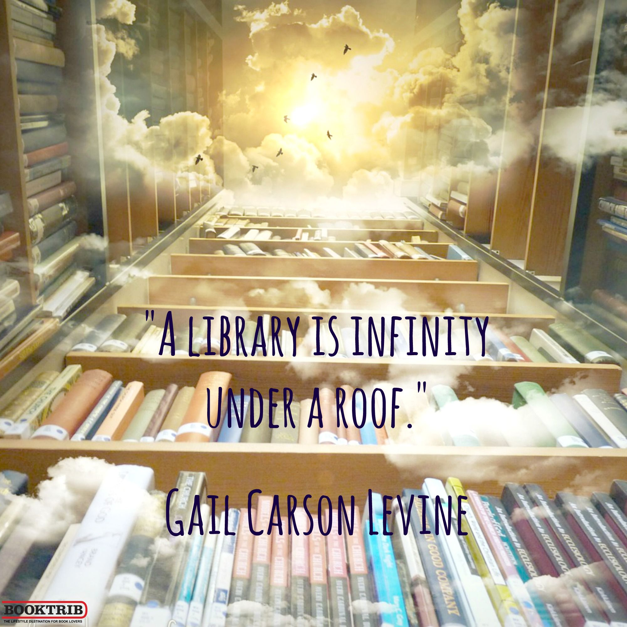 A Library Is Infinity Under A Roof Gail Carson Levine