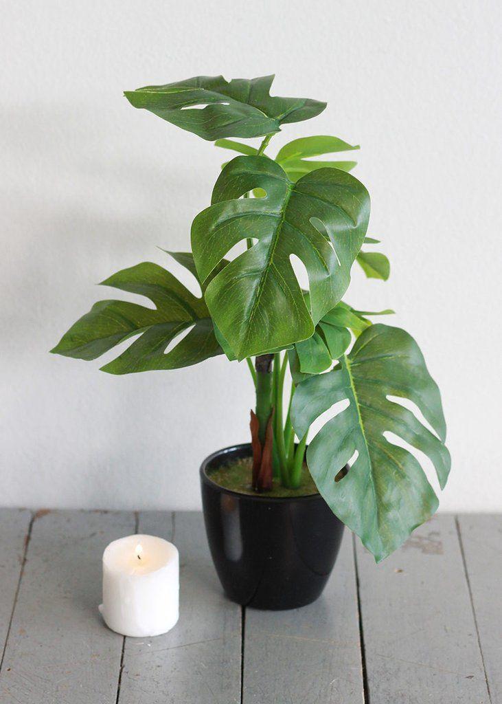 465db050532 Faux Split Philodendron Plant Arrangement in Black Flower Pot br 10