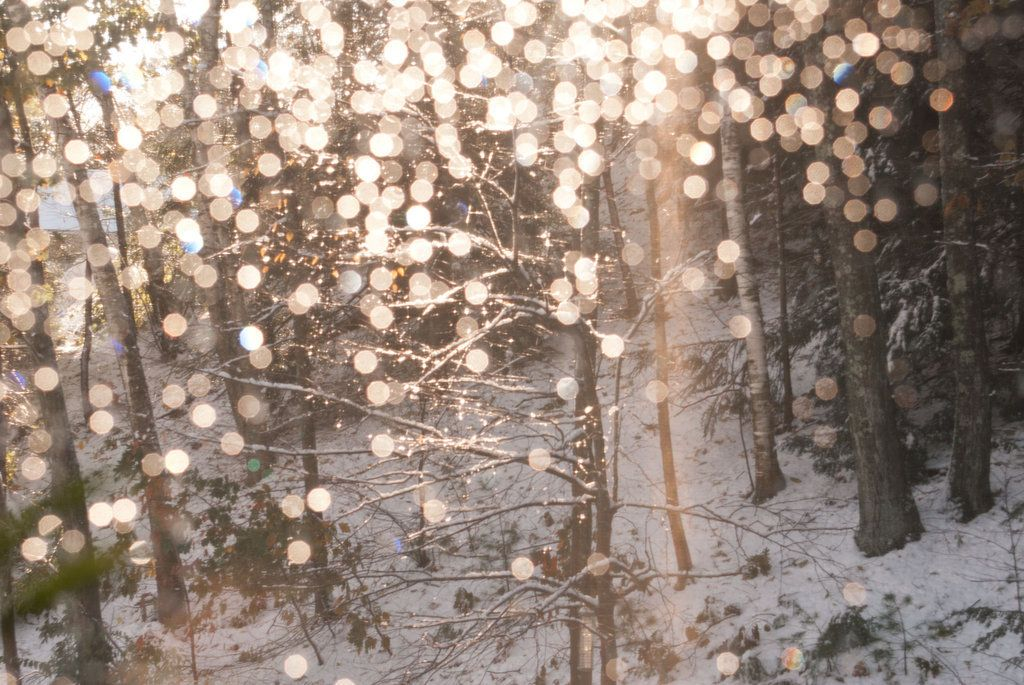 Everyone Can Use A Snuggie Winter Wallpaper Winter Tumblr Backgrounds Winter Sparkle