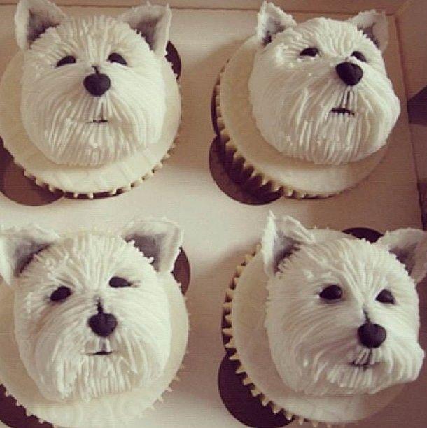 Dog Cupcakes | Dog cupcakes, Puppy cupcakes, Cupcakes ...