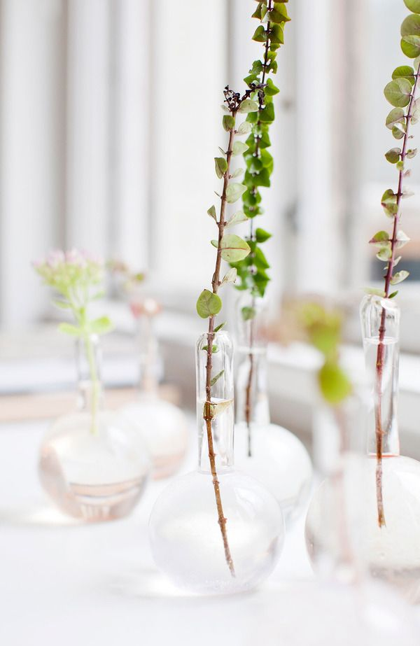 Stems And Bud Vases Blooming Marvellous Pinterest Flowers