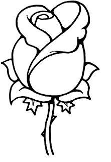 Riscos De Flores E Plantas Flowers And Plants Em 2020 Desenhos