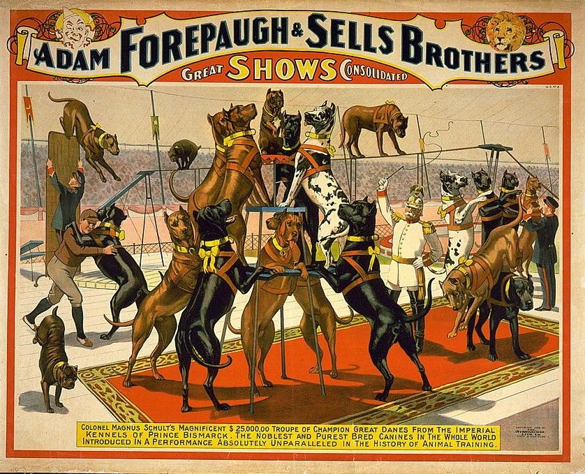 Vintage Circus Ad Poster