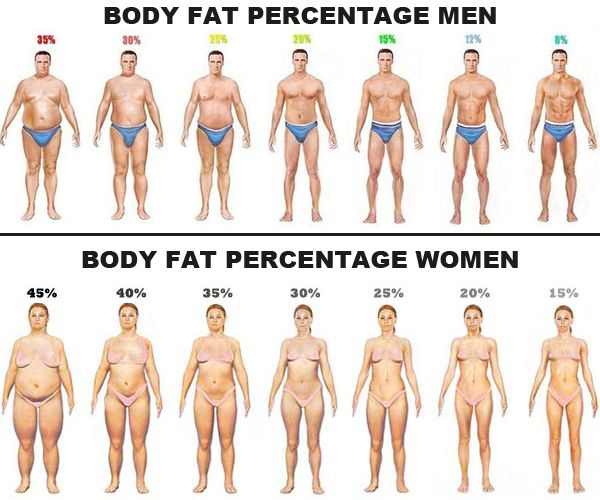 Same weight different body fat