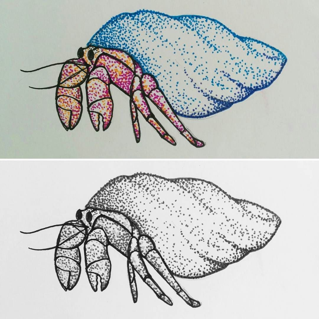 A quick little hermie for you today. Hermit Crabs the ... Hermit Crab Art