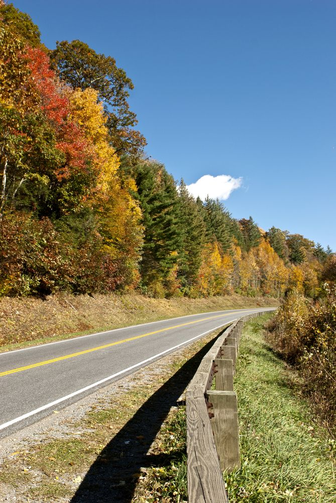 Let's drive through the Smoky Mountains in the Fall!