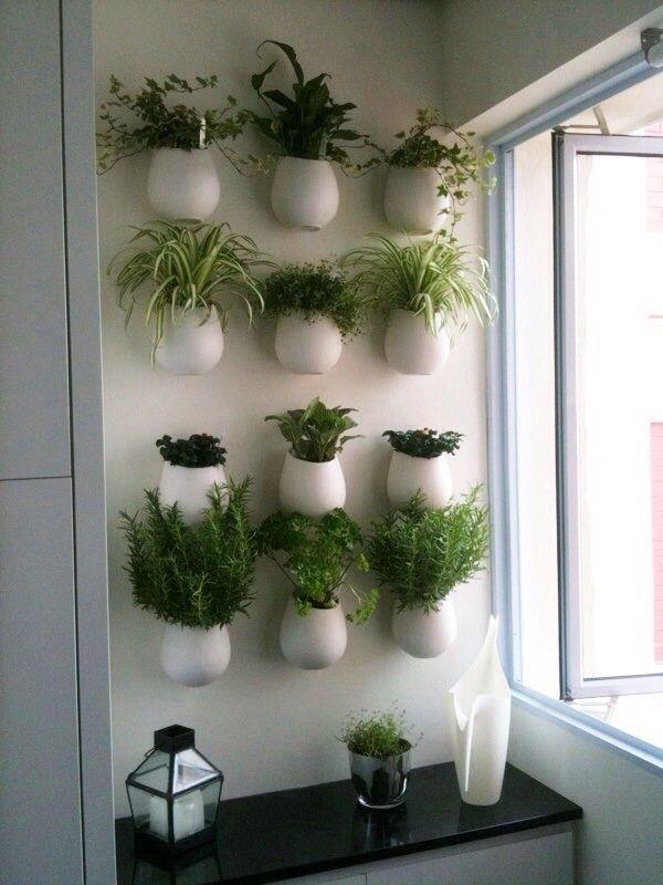 plante herbe aromatique idee decoration diy do it yourself cuisine balcon mur vegetal