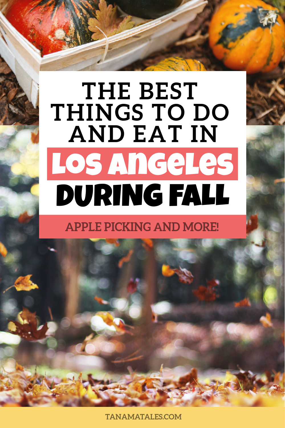 Things To Do In Los Angeles During The Fall Tanama Tales In 2020 Fall Travel Destination Fall Travel Usa Travel Guide