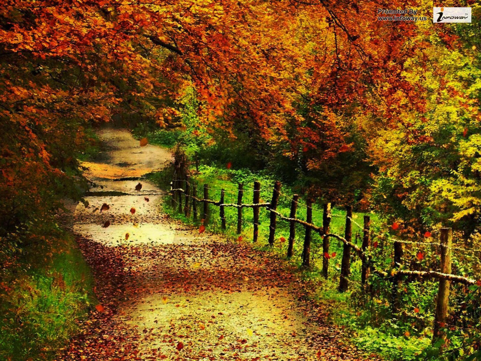 From the book where you might see the beautiful autumn leaves - Show Friends Family How Much You Care With The Gift Of Massage Book Now