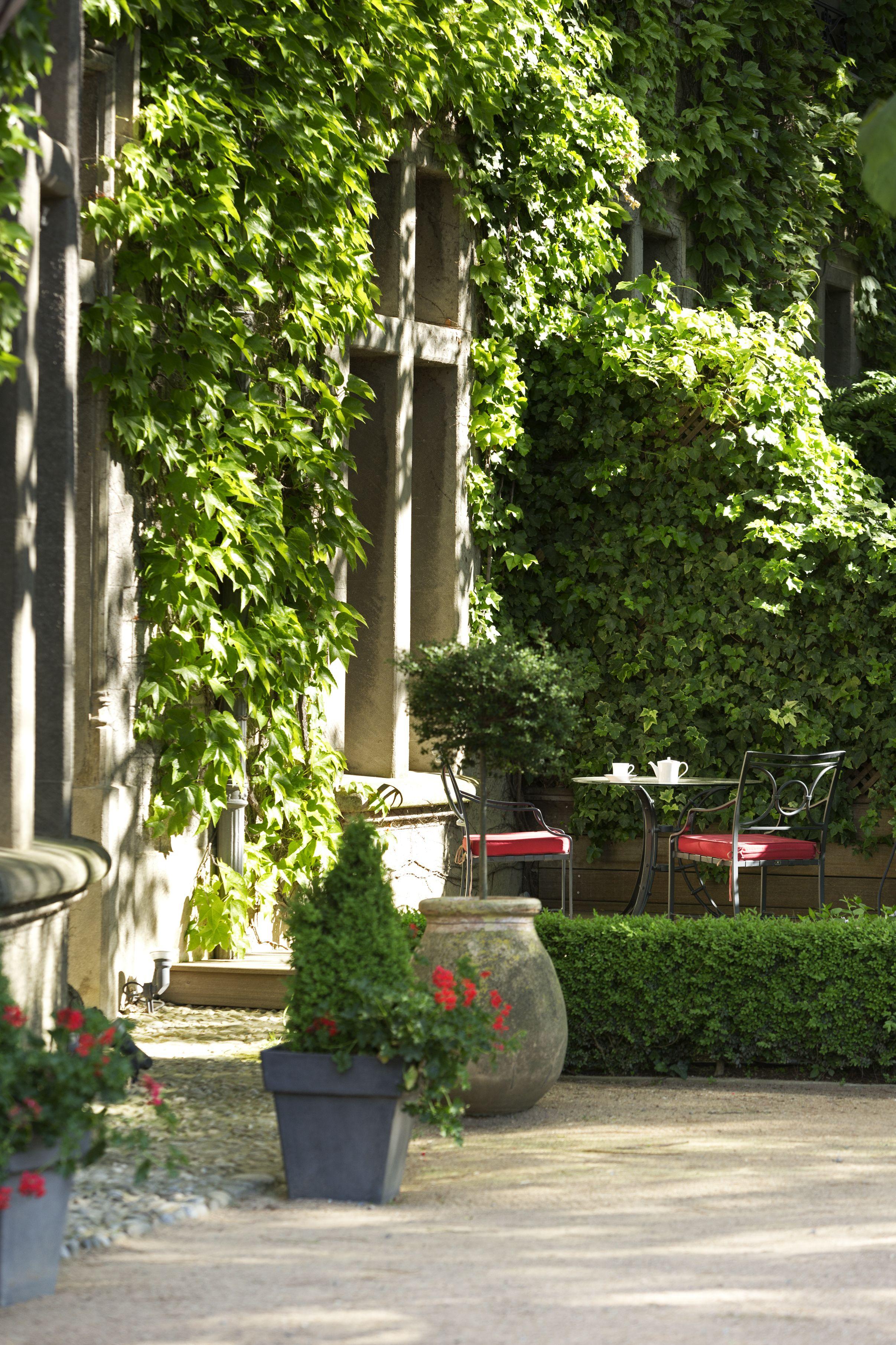 Take your tea under the ivy @ Hôtel de la Cité Carcassonne #France ...