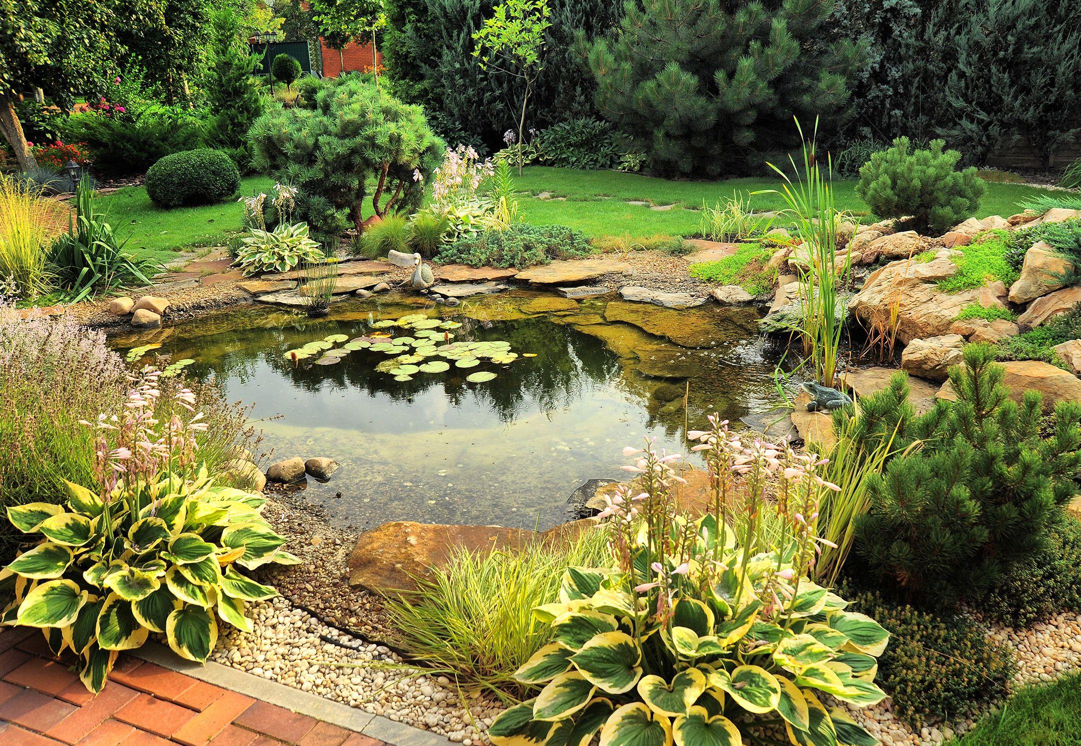 Beautiful Natural Backyard Ponds Design Ideas With Garden