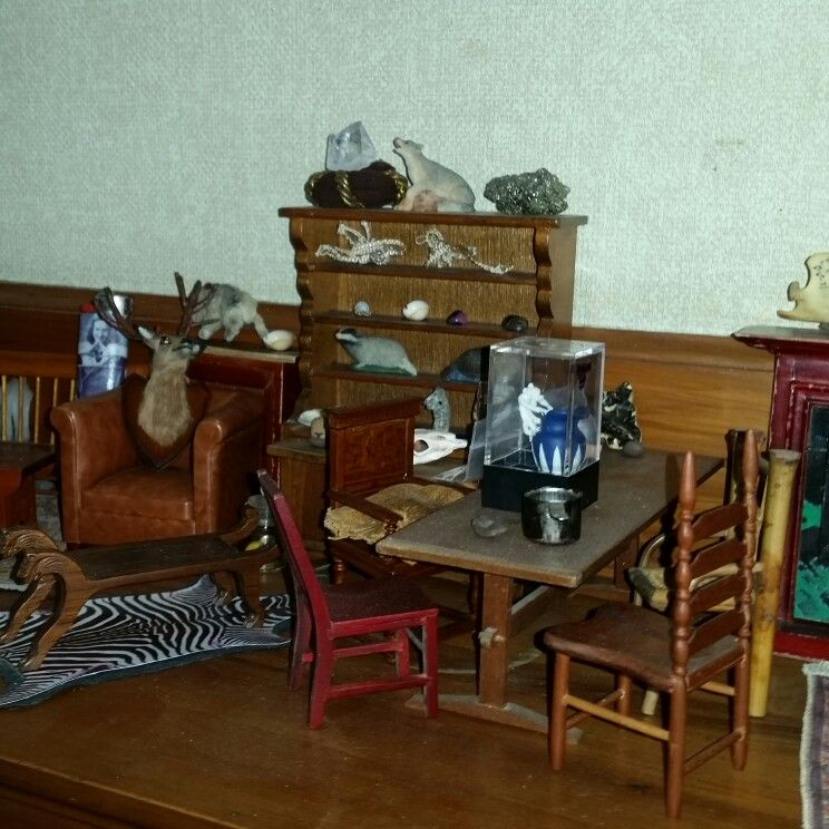 The contents of the trophy room for the Colby room museum of science ...