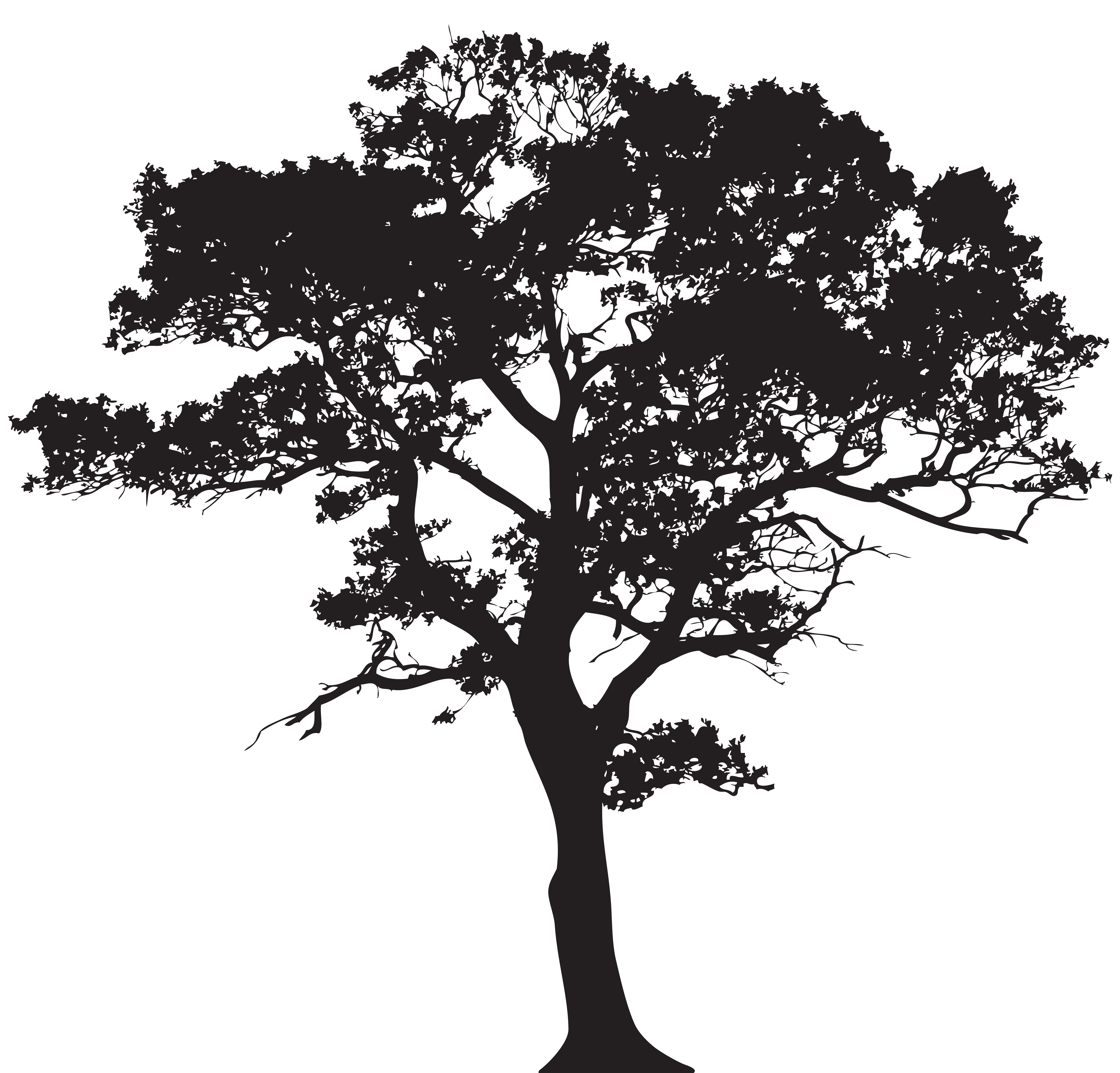 Silhouette Tree Png Clip Art Image Gallery Yopriceville High Quality Images And Transparent Png Tree Silhouette Tattoo Silhouette Clip Art Tree Silhouette