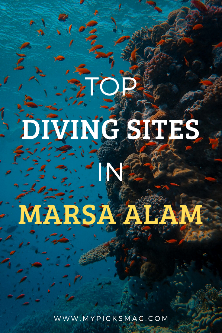 7 Reasons To Visit Marsa Alam [Infographic] In 2020
