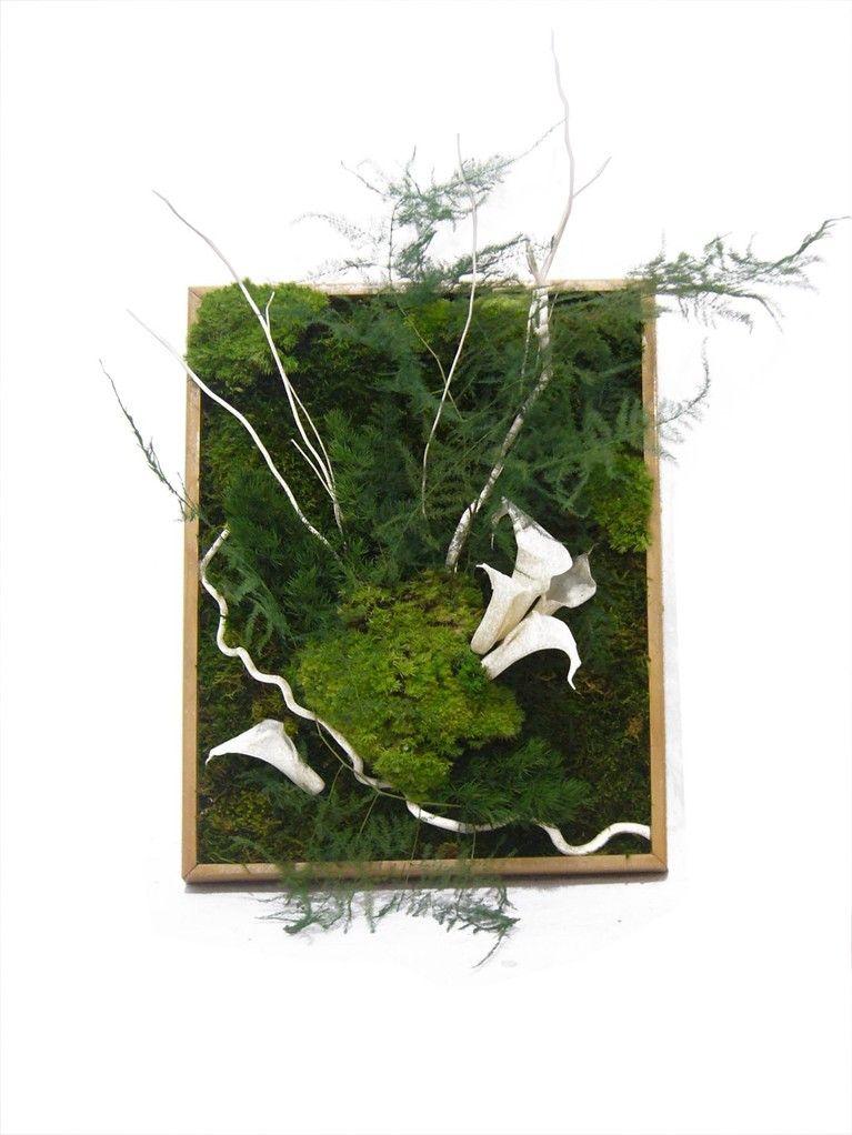 cadres stabilis design vegetal gr dini miniatura. Black Bedroom Furniture Sets. Home Design Ideas