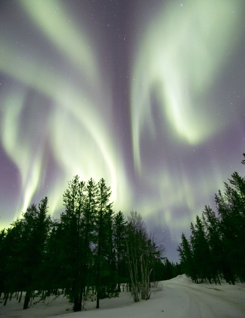 Lynn Lake Manitoba : manitoba, Northern, Lights,, Lake,, Manitoba,, Canada, Lights, Photography,, Places, Travel
