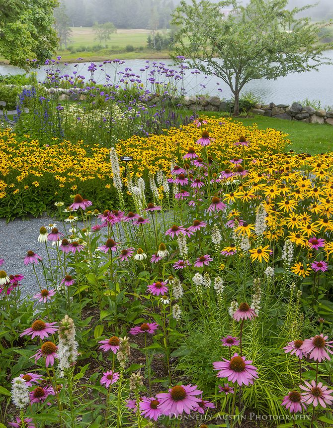 Southwest Harbor, Maine: U003cbr /u003e Flowering Gardens And Pathways In The  Charlotte Rhoades Park And Butterfly Garden