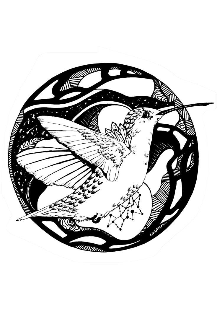 Free Printable Hummingbird Coloring Pages For Adults And Kids Who Love Hummingbirds Download These