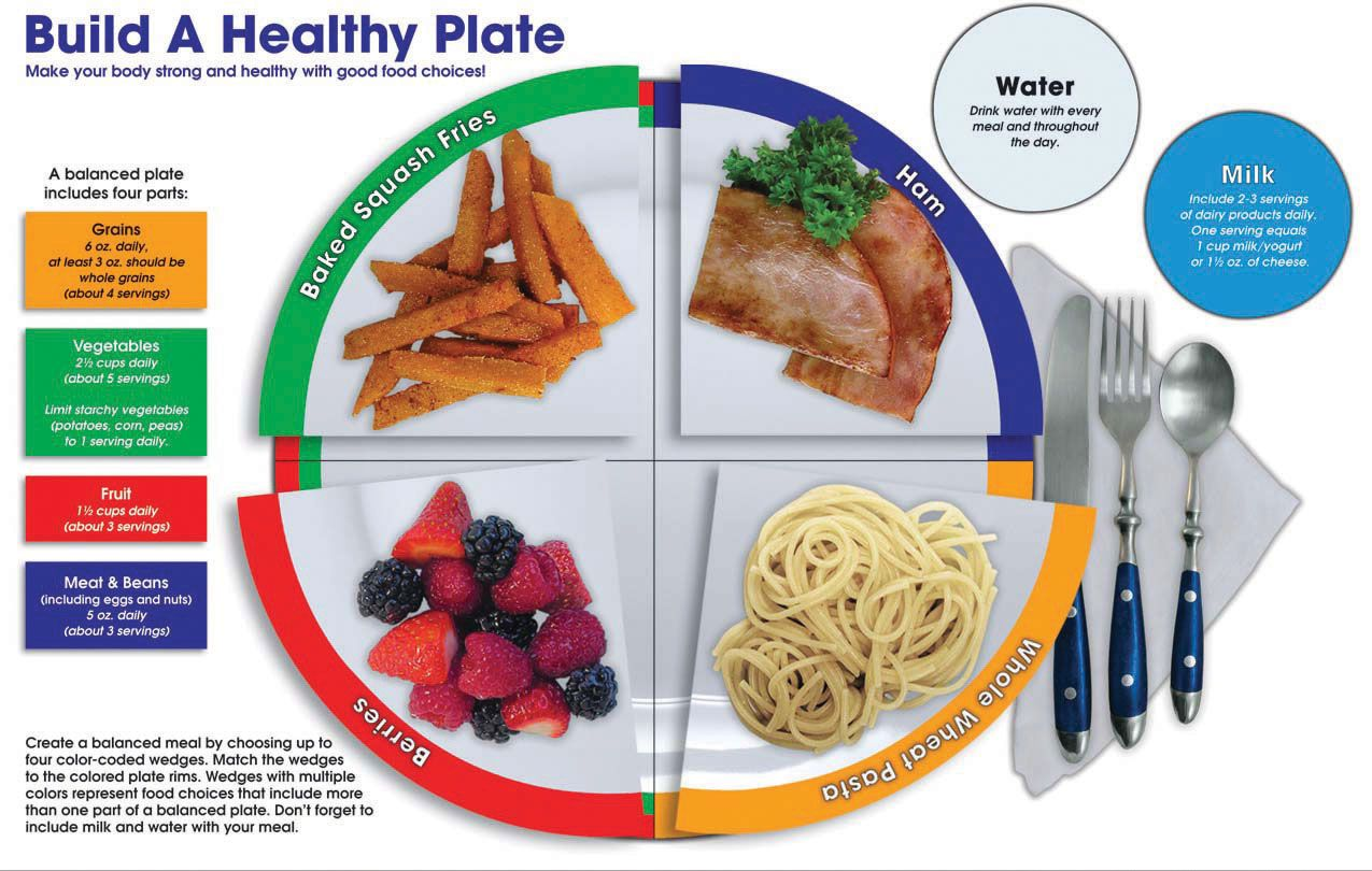 Build A Healthy Plate, 60 pieces Offer students a fun
