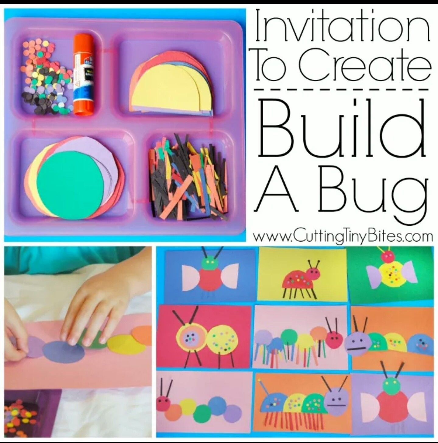 Living Things Invitation To Build A Bug