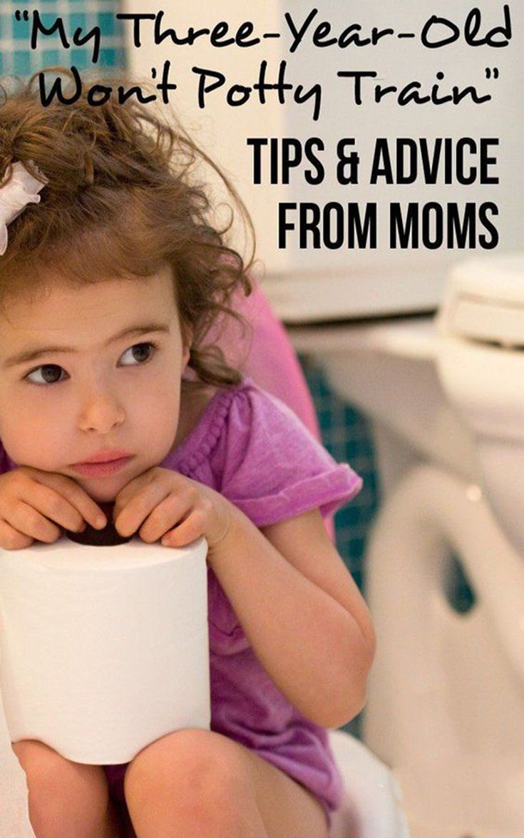 12 Best Potty Training Books for Toddlers   Kids potty