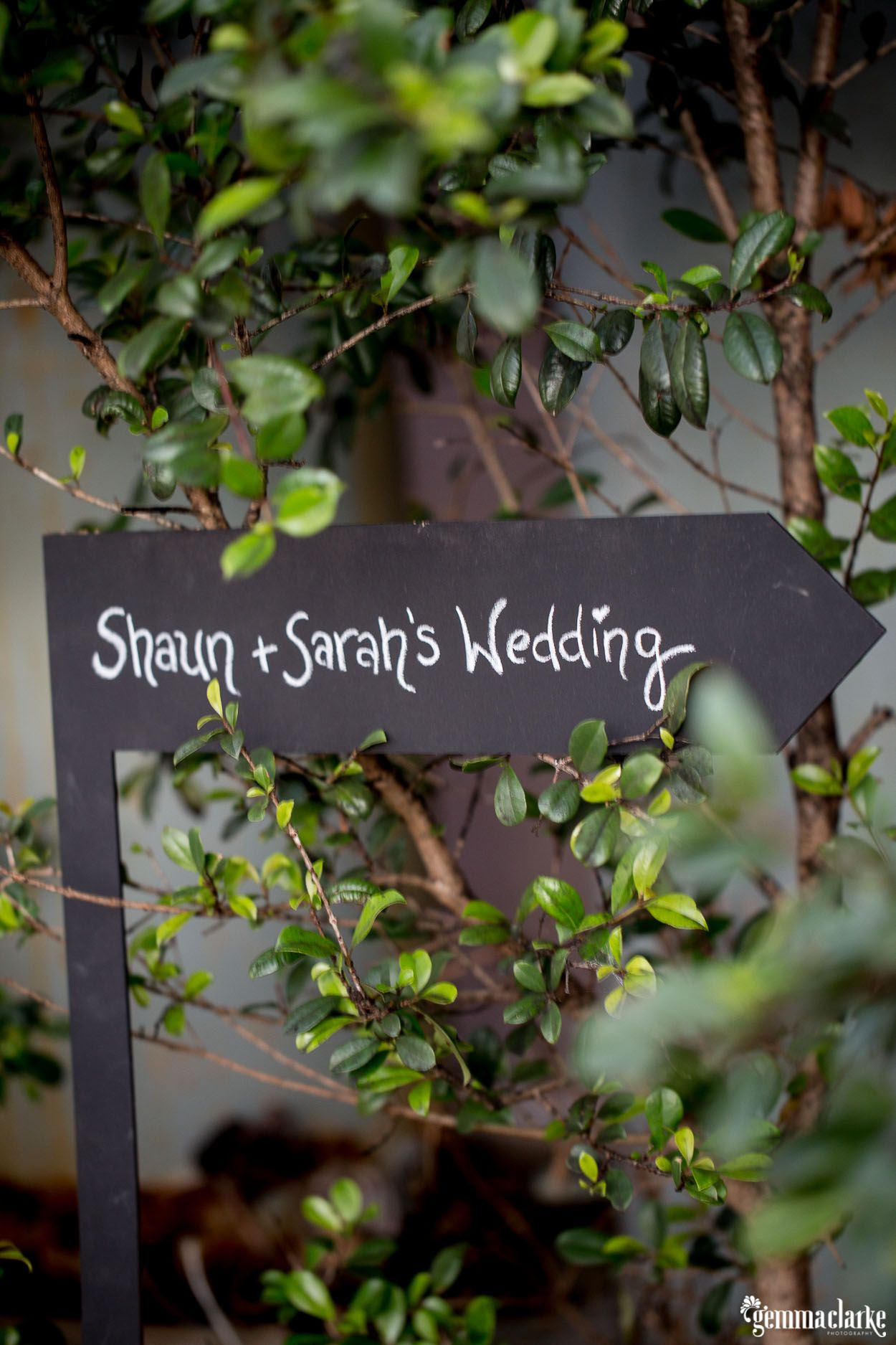 Real Wedding: Sarah & Shaun | The Wedding Collector