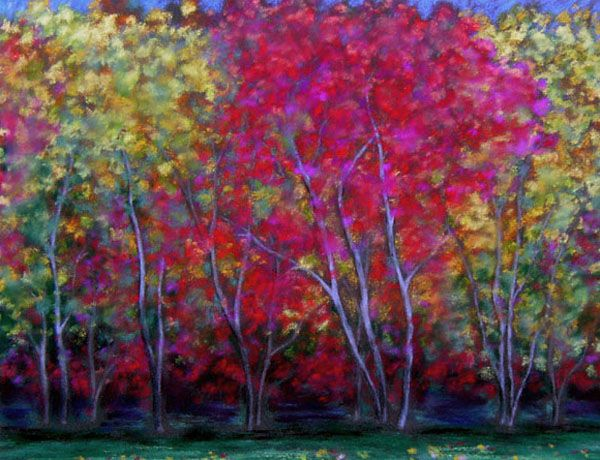 Win's Maples, pastel, by Astrid Paustian
