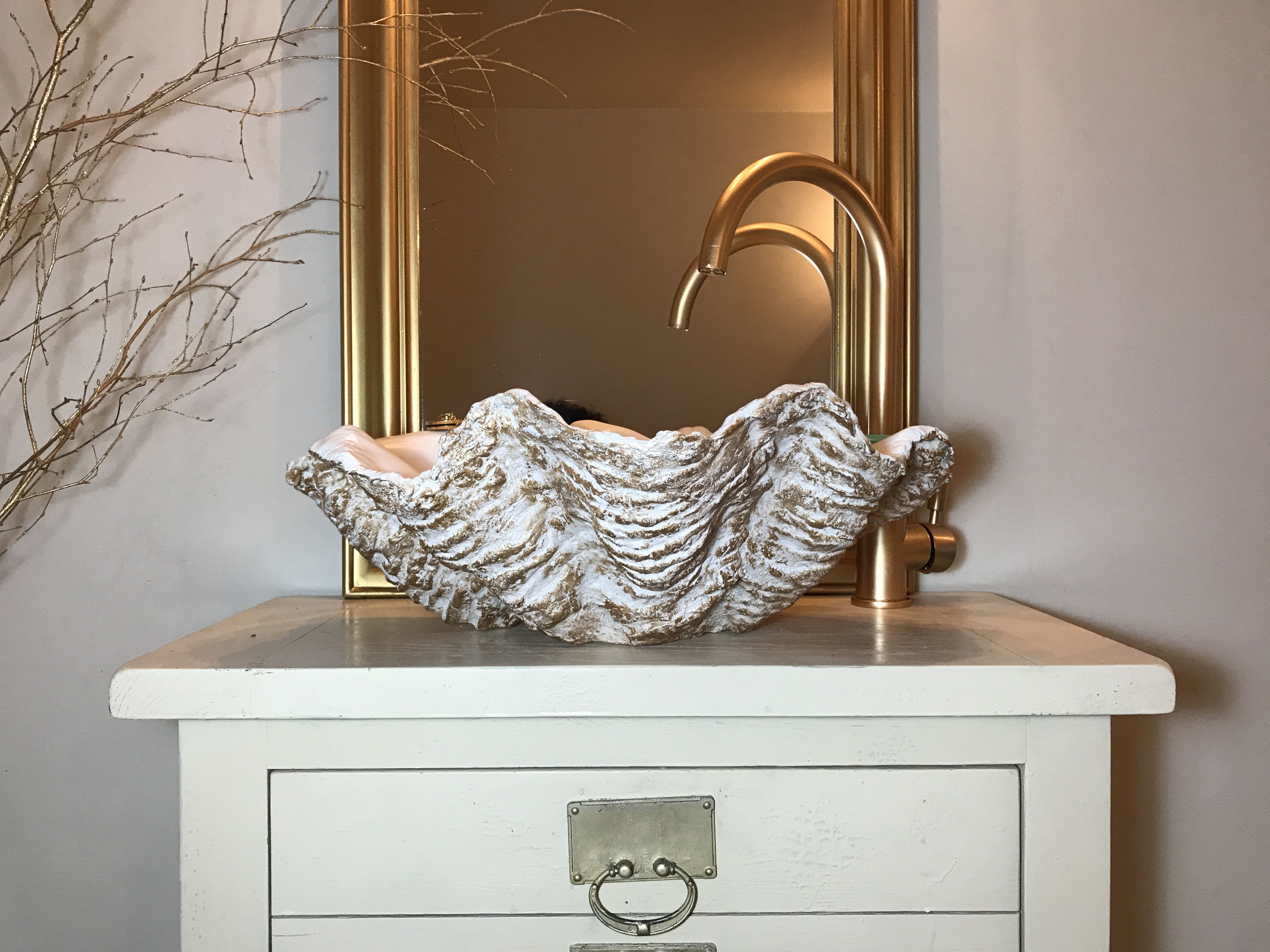 This Our Newest Giant Clam Shell Sink Basin The Baby Of The