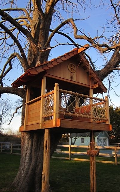 We just added downloadable plans for this treehouse on our ...