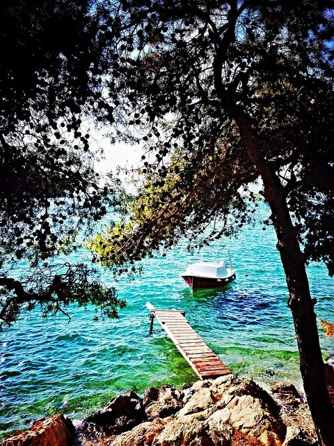 Dalmatian Romance | Cavtat, Croatia