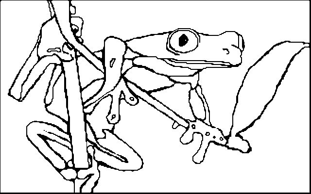 Green Tree Frog Coloring Page Pictures