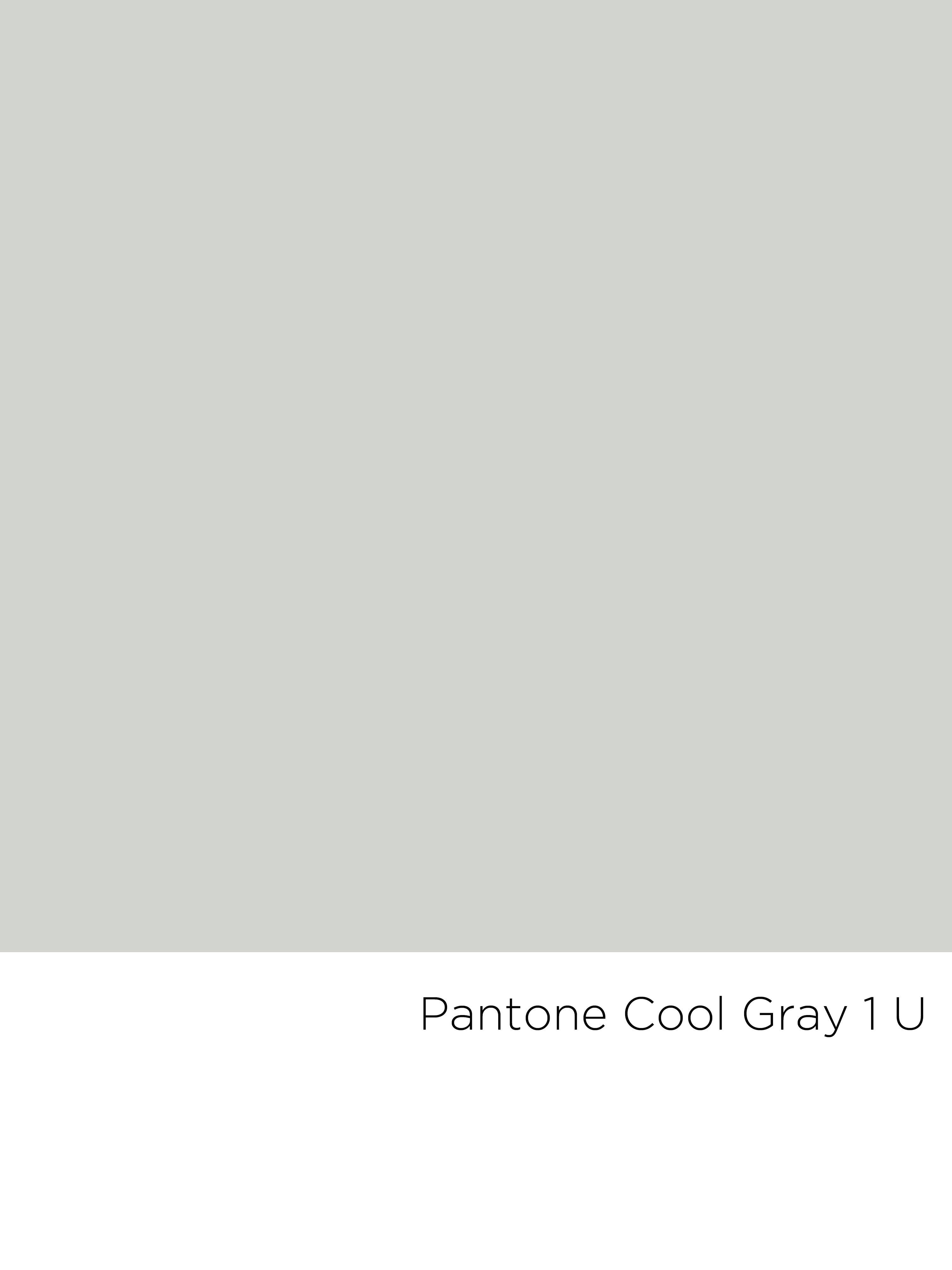 Pantone Cool Gray 1 U Color Pinterest Pantone