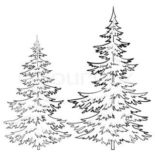 Drawings Of Old Pine Tree Christmas Trees Under Snow On A White Background Contou Tree Drawings Pencil Christmas Tree Drawing Pine Tree Silhouette