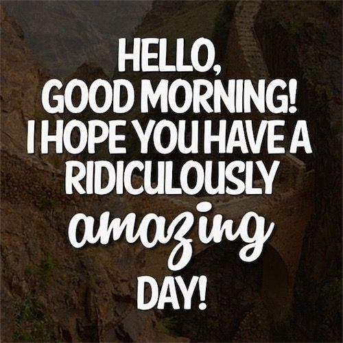 Hello Good Morning I Hope You Have A Ridiculously Amazing Day Good Morning Texts Good Morning Quotes Cute Good Morning Texts
