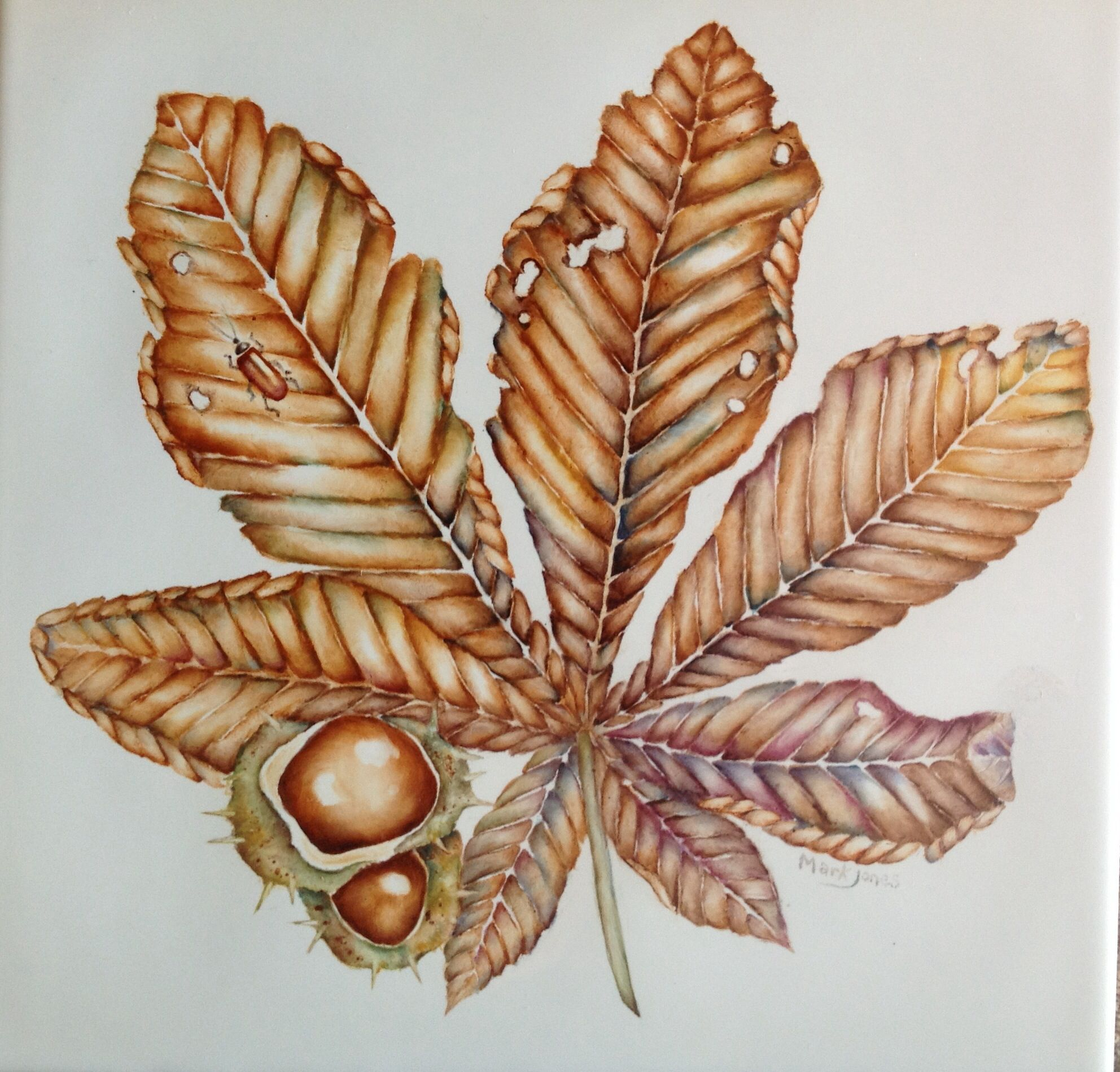 Golden horse chestnut painted on China by Mark Jones