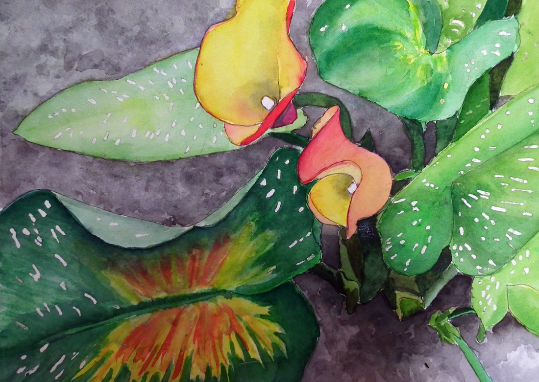 Cheryl Stevenson, Artist - Skip Radcliffe Photos - Life of a Lily