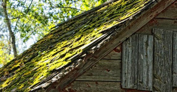 How To Remove Moss From The Roof With Images Roof Cleaning Wood Shingles Roofing
