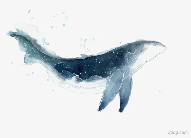 Http Img2 3png Com F04aff11cc16591ab8fabe29b4c5de1fefeb Png Watercolor Whale Whale Painting Whale Art